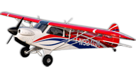 hangar 9 Carbon Cub FX-3
