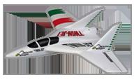 Multiplex Twinjet