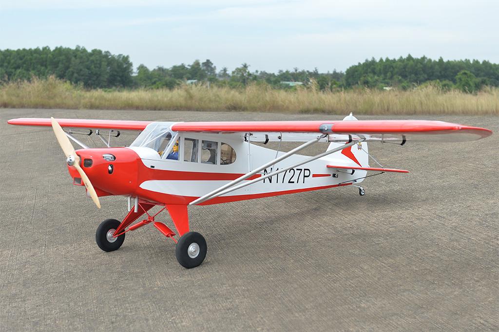 Piper PA-18 Super Cub Black Horse Model