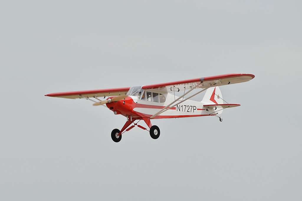 Piper PA-18 Super Cub Black Horse Model