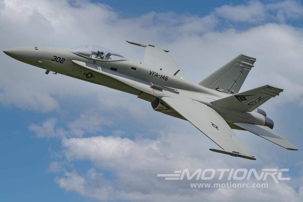 F/A-18C Hornet Gray Diamonds  Freewing Model