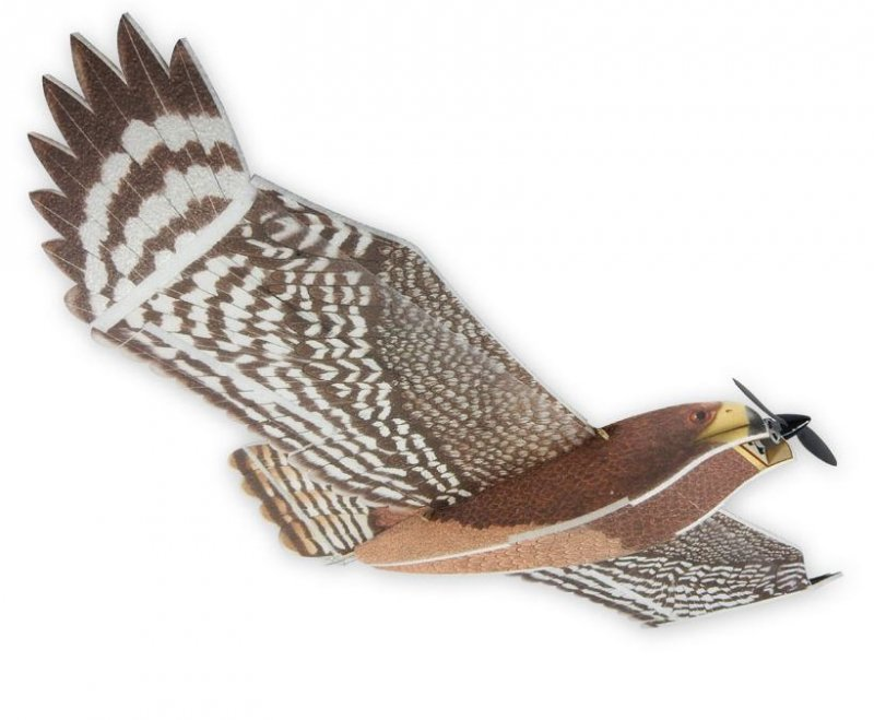 Hawk Electro PICHLER