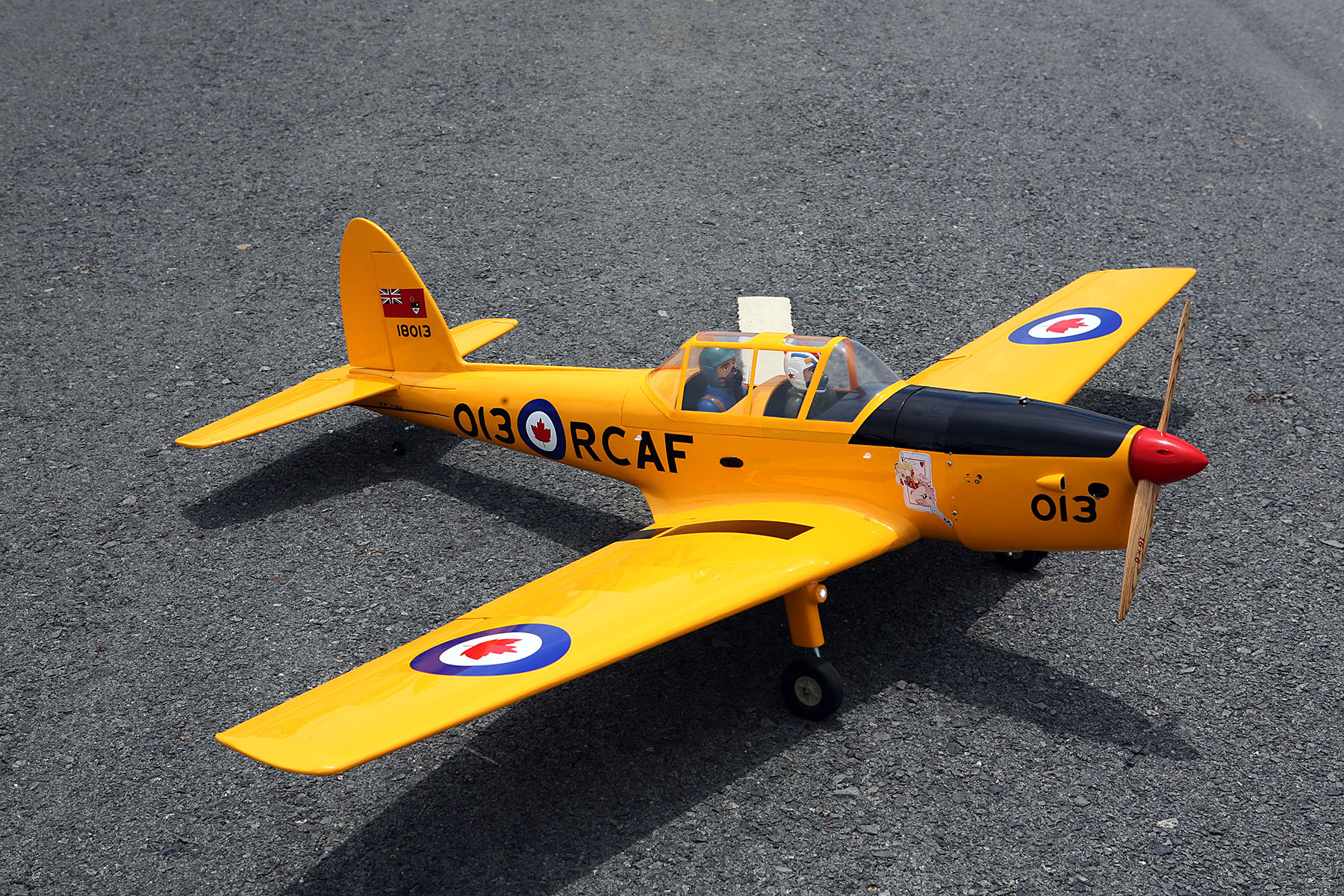 DHC-1 Chipmunk Seagull Models