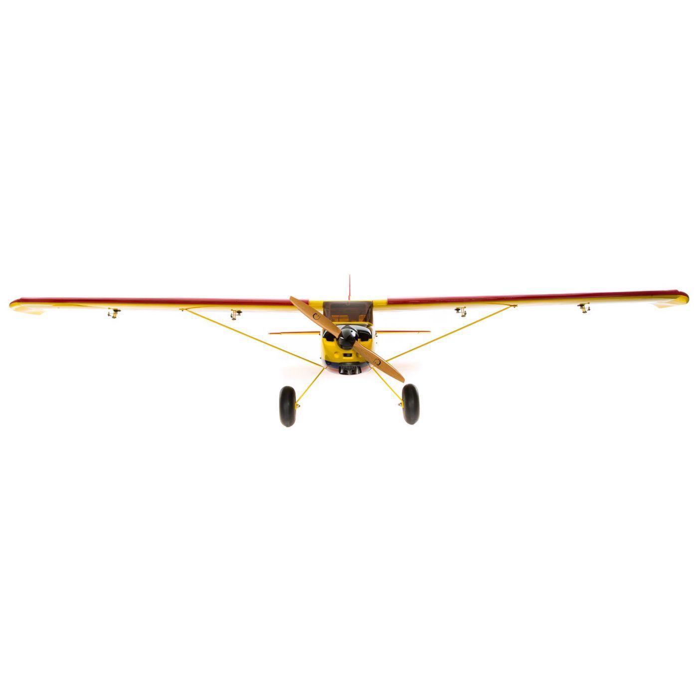Timber 110 hangar 9