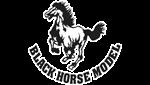 Black Horse Model logo